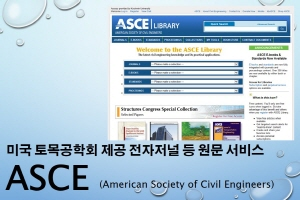 ASCE (American Society of Civil Engineer) - Ds