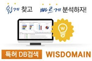 [직접접속] WISDOMAIN 세계특허DB